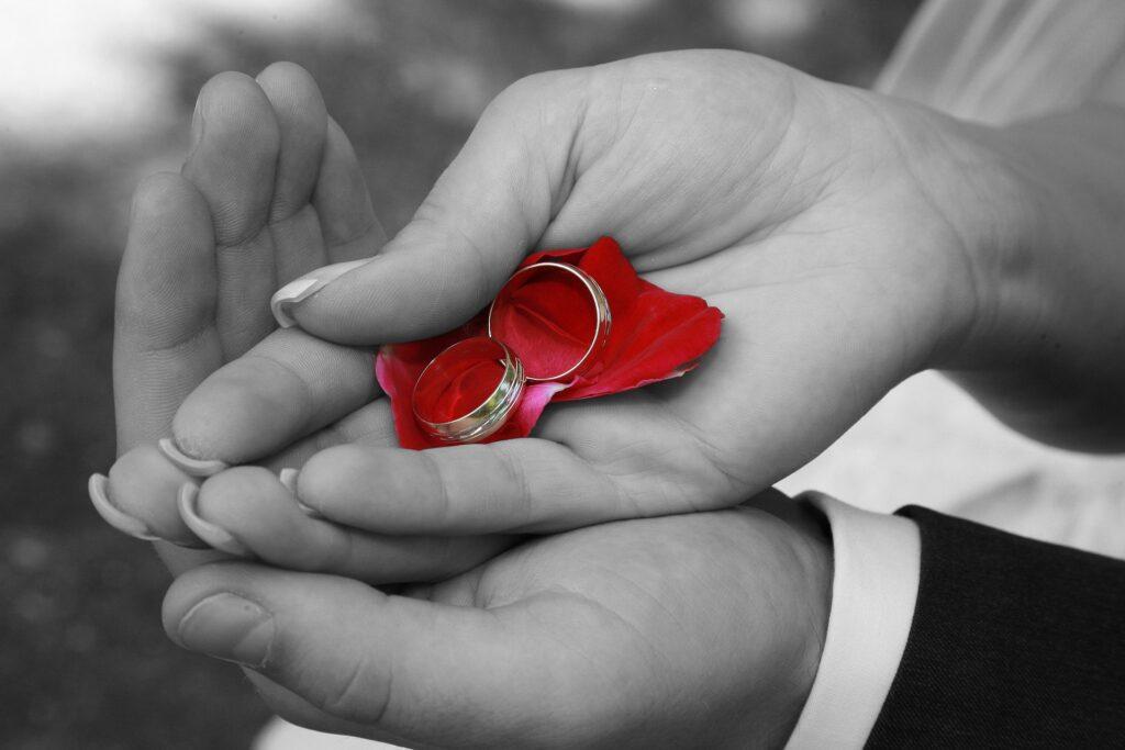 Titanium Wedding Rings,